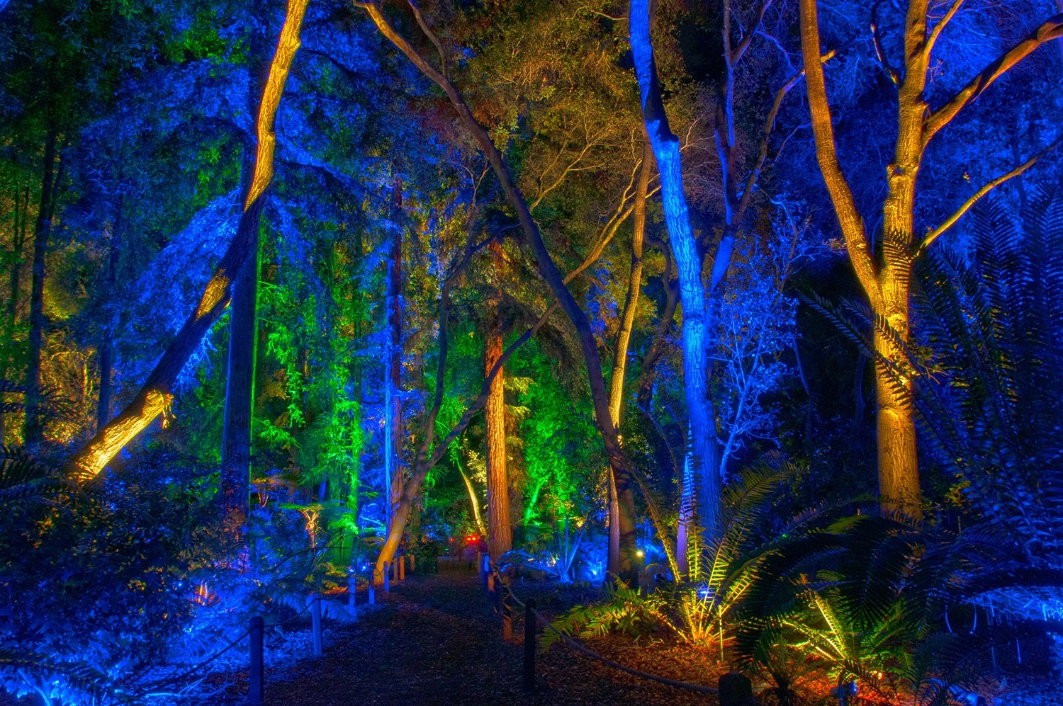 Descanso Gardens Enchanted Forest Of Lights Pcc Courier