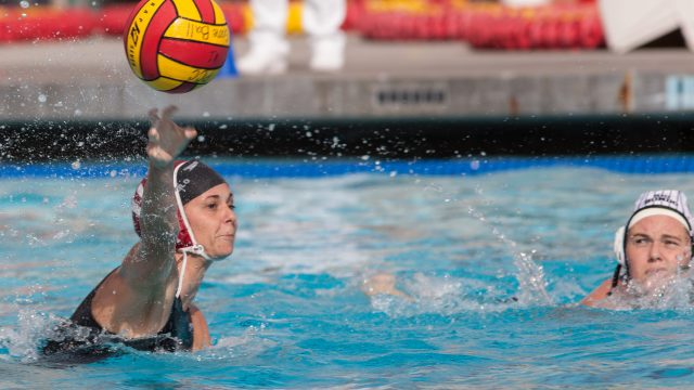 waterpolo_feature2.jpg